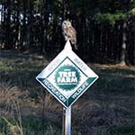 Certified Tree Farm sign